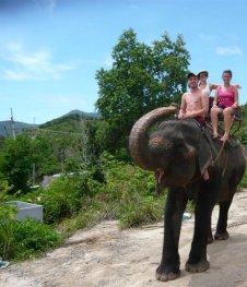 Cruising on an Elephant, Thailand